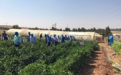 Advance Consulting starts Horticultural Pilot Project in Jordan