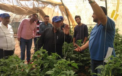 Advance Consulting organizes first field day for Jordan's horticulture sector