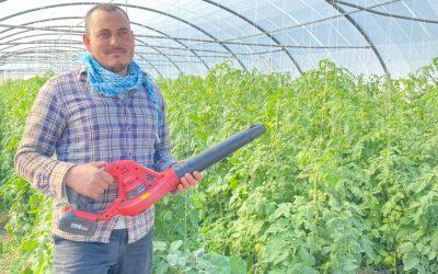 كراسة  – منفاخ الهواء للمساعدة في تلقيح البندورة