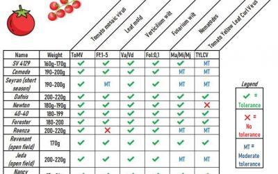 Updated! Tolerant seed varieties for vegetable crops
